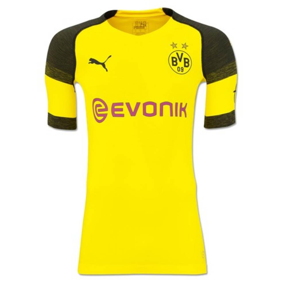 8ceb22ef6 Borussia Dortmund 2018-2019 Home Authentic evoKNIT Shirt [75330901] -  $119.15 Teamzo.com