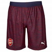 Arsenal 2018-2019 Away Shorts (Navy)