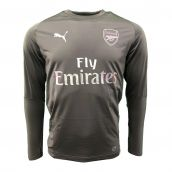 Arsenal 2018-2019 Training Sweat Top (Iron Gate)