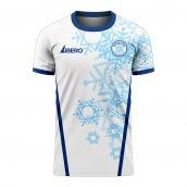 Antarctica 2020-2021 Home Concept Football Kit (Libero)
